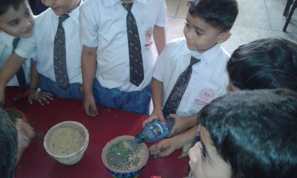 Germination Activity; KMA Primary School, Kharadar